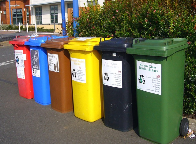 Sorting Garbage in Many Coloured Dustbins