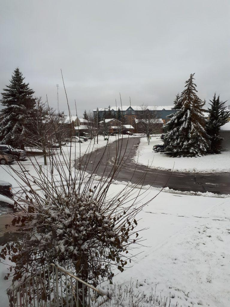 Our First Winter in Canada