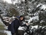 The Soft Fresh Snow Makes it all so Pretty